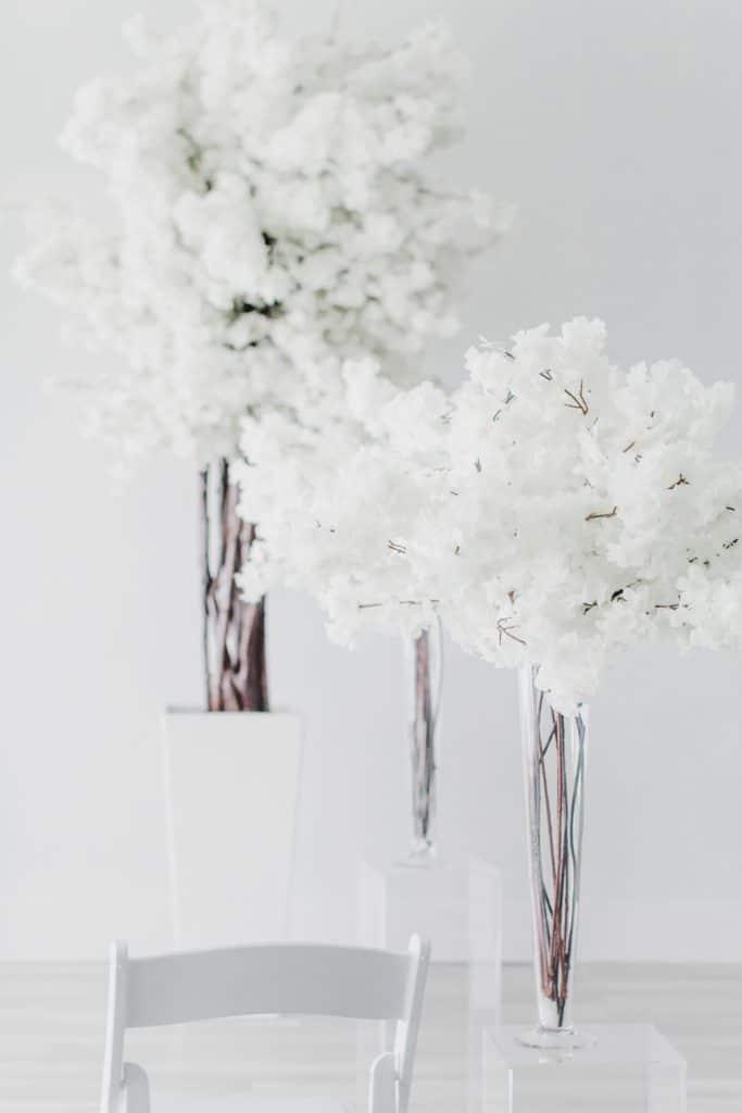 White Blossom Rental